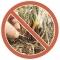 О выжигании сухой растительности